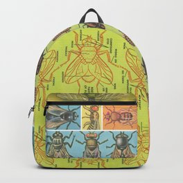 FLY Science Backpack