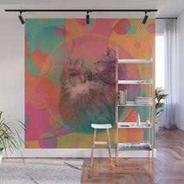 Kitty Cat Sweet Dream Wall Mural