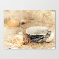 shells Canvas Prints featuring Shells by Joanna Pechmann