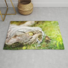 Cat and butterfly Rug