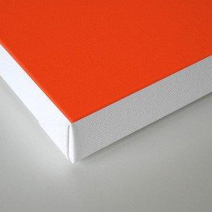 Geometric swan Canvas Print