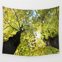 Tall Maple Trees in the Jackson County Forest Wall Tapestry