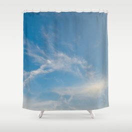Hummingbird Cloud by Teresa Thompson Shower Curtain