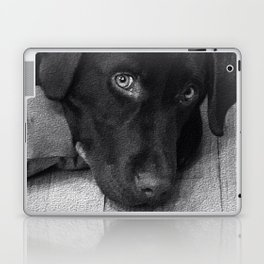 Puppy Portrait Textured Laptop & iPad Skin