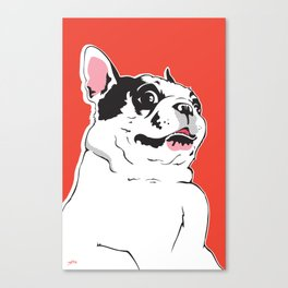 Boston Terrier Side-Eye Canvas Print