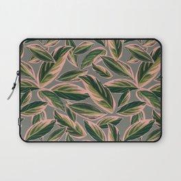 Calathea Leaves Pattern- Pink Green Gray Laptop Sleeve