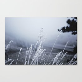 Season – Winter Canvas Print