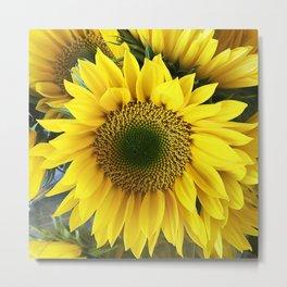 Bright, Happy Sunshine Sunflower Metal Print
