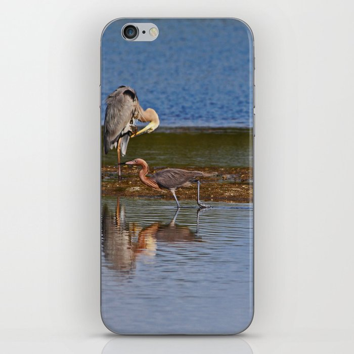 Strolling in Ding iPhone Skin