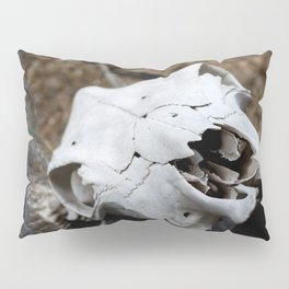 Desert Skull Pillow Sham