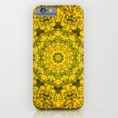 Golden Star Mandala cellphone case by photosbyhealy