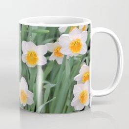 White Daffodils  Coffee Mug