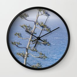 """""""Agave and Pacific"""" by Murray Bolesta! Wall Clock"""