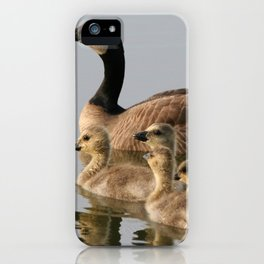 Mother Goose and Her Goslings iPhone Case