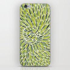 Green Chrysanthemum  iPhone & iPod Skin