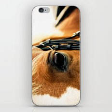 a horse's kind eyes. iPhone & iPod Skin
