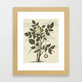 Tire Swing Framed Art Print