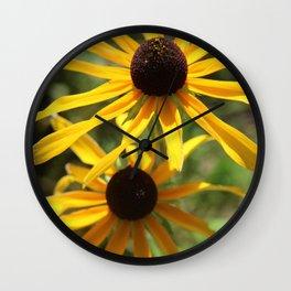 Brown Eyes 1 Wall Clock