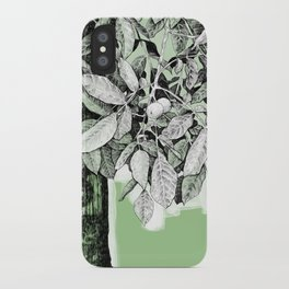 Wayside iPhone Case