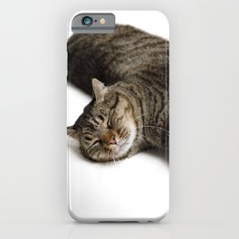Adorable Tabby Cat Stretching iPhone Case