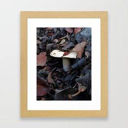 Manitari Framed Art Print