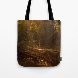 The Fairy Grove Tote Bag