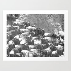 The migration Art Print
