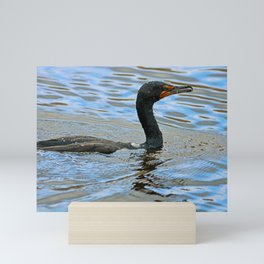 A Nice Day for a Swim Mini Art Print