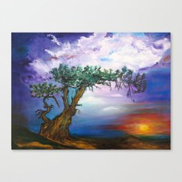 The Tree in Sunset Canvas Print