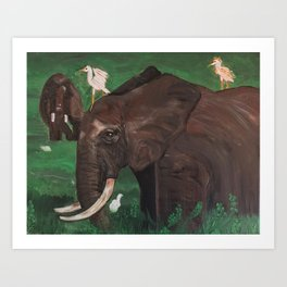 Elephant in tall grass Art Print