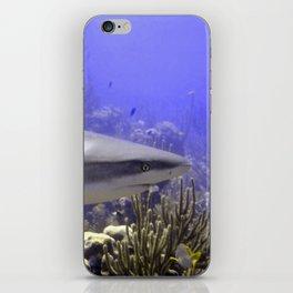 Shark Swimming Past iPhone Skin