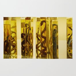Snakes in formalin Rug