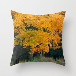Minnewaska Autumn 01 Throw Pillow