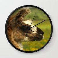 llama Wall Clocks featuring Llama by Nature In Art...