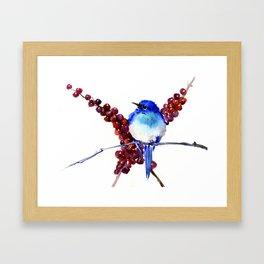 Bird Blue red , Mountain Bluebird adn berries Framed Art Print