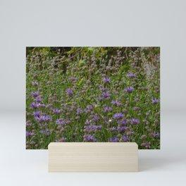 Purple Sage Bushes Mini Art Print