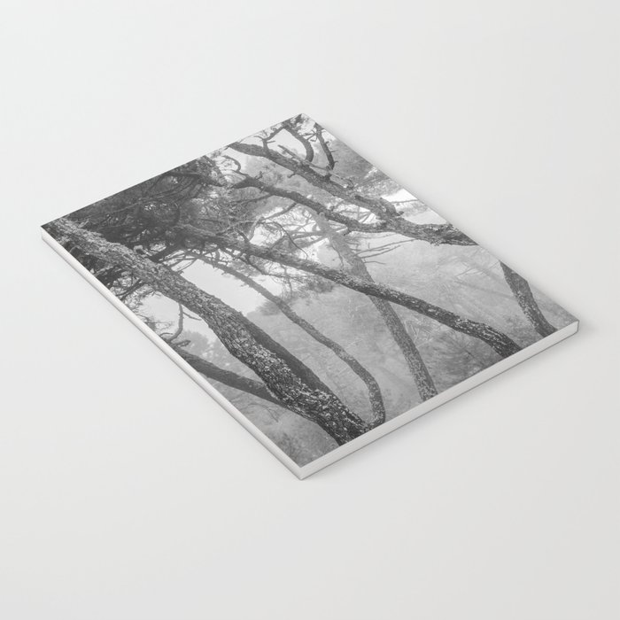 """Forest dance"" BW Notebook"