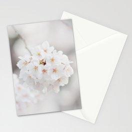 Springy Stationery Cards