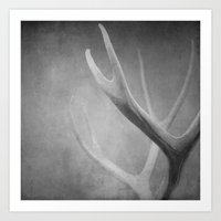 antlers Art Prints featuring Antlers by Bella Blue Photography