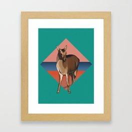Miyajima Deer Framed Art Print