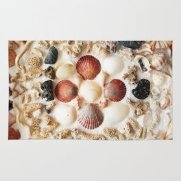Scallops + Coral x Lucina Rug