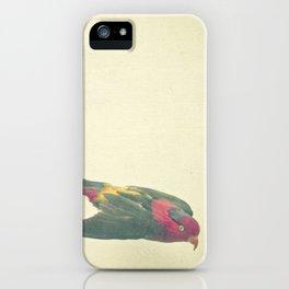 Bird Study #4 iPhone Case
