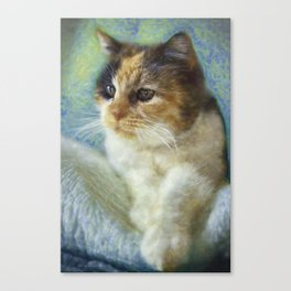Chica Canvas Print