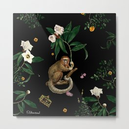 Monkey World: Amber-Ella Metal Print