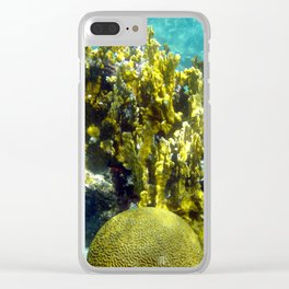 Watercolor Sealife Fire and Brain Coral, A Feisty & Witty Combination Clear iPhone Case