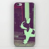 puppy iPhone & iPod Skins featuring Puppy by Karolis Butenas
