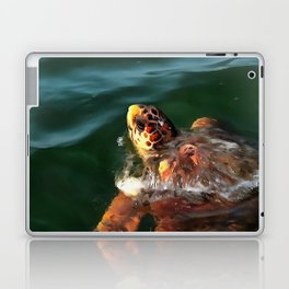 Loggerhead Turtle Laptop & iPad Skin