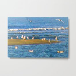 Peaceful seagulls Metal Print