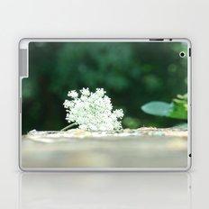 Queen Anne's Lace w/ bokeh Laptop & iPad Skin