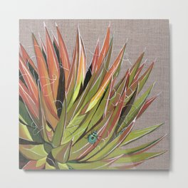 Yucca filifera with beetle Metal Print